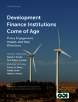 Development Finance Institutions Come of Age